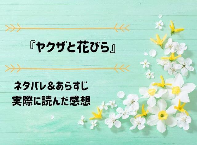 ネタバレ記事「ヤクザと花びら」アイキャッチ