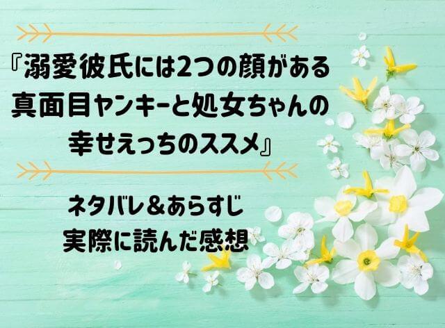 「溺愛彼氏には2つの顔がある 真面目ヤンキーと処女ちゃんの幸せえっちのススメ」のネタバレ記事アイキャッチ